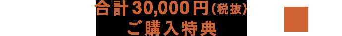 合計30,000円(税抜)ご購入特典